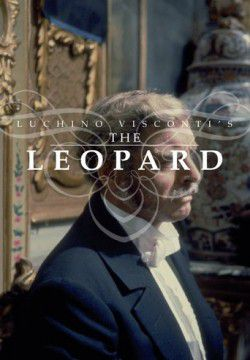 cover The Leopard