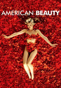 cover American Beauty