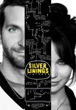 cover Silver Linings Playbook