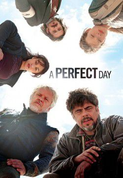 cover A Perfect Day